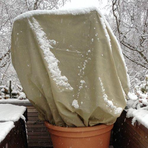 Winterschutzhaube Farbe: Beige