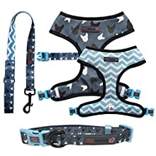 Love Frenchie - Reversible Harness, Collar and Lead (Blue La La, Large)
