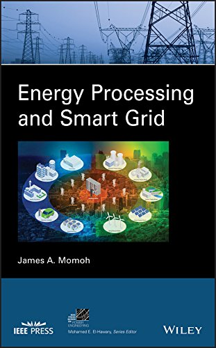 Energy Processing and Smart Grid (IEEE Press Series on Power Engineering) (English Edition)