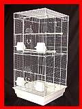 Boston - Gabbia per uccelli da appartamento per parrocchetto, calopsitta, inseparabili
