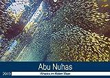 Abu Nuhas - Wracks im Roten Meer (Wandkalender 2019 DIN A2 quer): Erlebnis Wracktauchen (Monatskalender, 14 Seiten ) (CALVENDO Wissenschaft) -