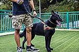 1T OneTigris Nylon Hundegeschirr Taktische Hunde Geschirr für Hundetraining/Outdoor Aktivitäten (M, Braun)
