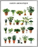 Kräuter Poster Kunstdruck und Kunststoff-Rahmen - Jardin Aromatique, Küchen-Kräuter (50 x 40cm)