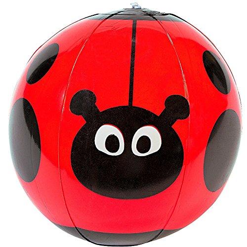 asserball Marienkäfer ┃ Mit Punkten ┃ Pool ┃ Pool Party ┃ Der Ideale Wasserball für kleine Wasserratten ✔ ()