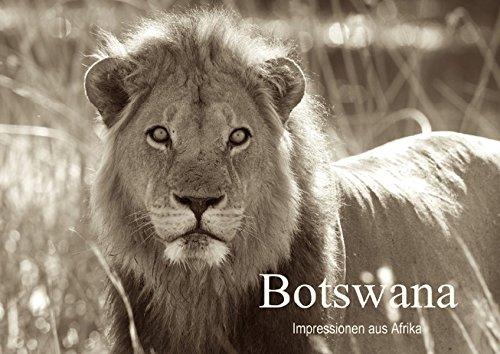 botswana-impressionen-aus-afrika-posterbuch-din-a2-quer-herrliche-schwarzweiss-fotos-aus-dem-norden-