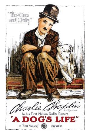 A DOG'S LIFE – Charlie Chaplin – US Imported Movie