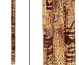 bambus-discount.com Tigerbambusrohr, gelb schwarz gefleckt, behandelt mit Borsalz, Durch. 5-6cm, Länge ca. 285 bis 300cm