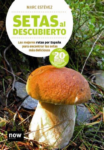 Setas Al Descubierto (Now books)