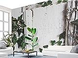 Yosot Benutzerdefiniertes Hintergrundbild Nordic Minimalistischen Tropischen Pflanzen Turtle Blätter Wandmalereien Kalk Fernseher Sofa Hintergrund Wandbilder 3D Tapete-300Cmx210Cm