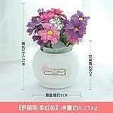 WANG-shunlida Silk Blume Simulation Blumentisch, Blumen, Topfpflanzen Dekoration, Hallenbad Wohnzimmer Tisch Dekoration, Keramik Flasche, künstliche Blumen Display Blume, Lila Rot