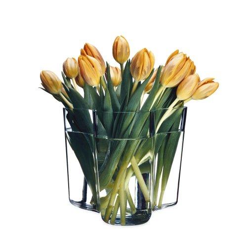 Iittala Alvar Aalto Collection - Vase - 160 mm - Klar