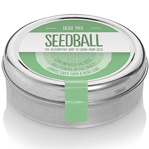 Semi erbe aromatiche assortite basilico erba cipollina maggiorana dolce aneto prezzemolo. Prodotto UK 2000 semi per scatola erbe giardino cucina