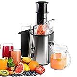Todeco - Power Juicer, Saftpresse - Höchstleistung: 850 W - Glaskapazität: 1 L - Silber