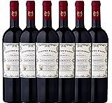6er Paket - Doppio Passo Primitivo Salento IGT 2017 - CVCB | halbtrockener Rotwein | italienischer Wein aus Apulien | 6 x 0,75 Liter