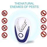 Goushy 2 Pack Repellente ad Ultrasuoni Repellente Topi Antizanzare Ragni, Ratti, Scarafaggi e Formiche, Insetti,Mosche (Bianca)