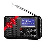 Raddy RF28 Tragbares Radio UKW Klein Radio Taschen FM Radio mit USB-Kabel, Lautsprecher, Kopfhöreranschluss, Favoritenspeicher, Taschenlampe, wiederaufladbare Akku -