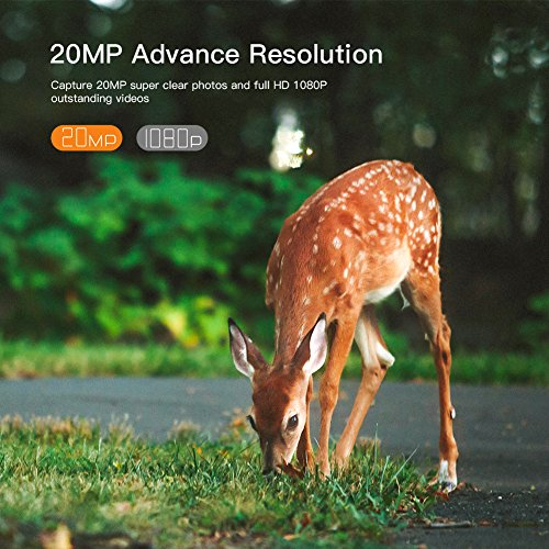 Zoom IMG-1 apeman fotocamera da caccia 20mp
