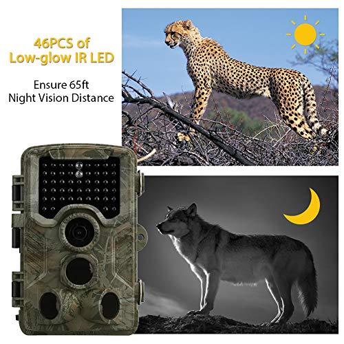Wildkamera mit Bewegungsmelder Infrarot Kamera 12MP 1080P 120° Weitwinkel Nachtsicht Wasserdichte Überwachungskamera Jagdkamera mit 0.6 Sekunden Auslösezeit 65 Ft 42 Infrarot-LEDs Beutekameras… (b4) -