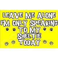Déjame en paz sólo voy a hablar con mi perro hoy Sheltie - Jumbo de imán/regalo