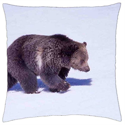 Alaska USA Grizzly Bear Wackelkarte: Grizzlybear beim Fischen Lentikular