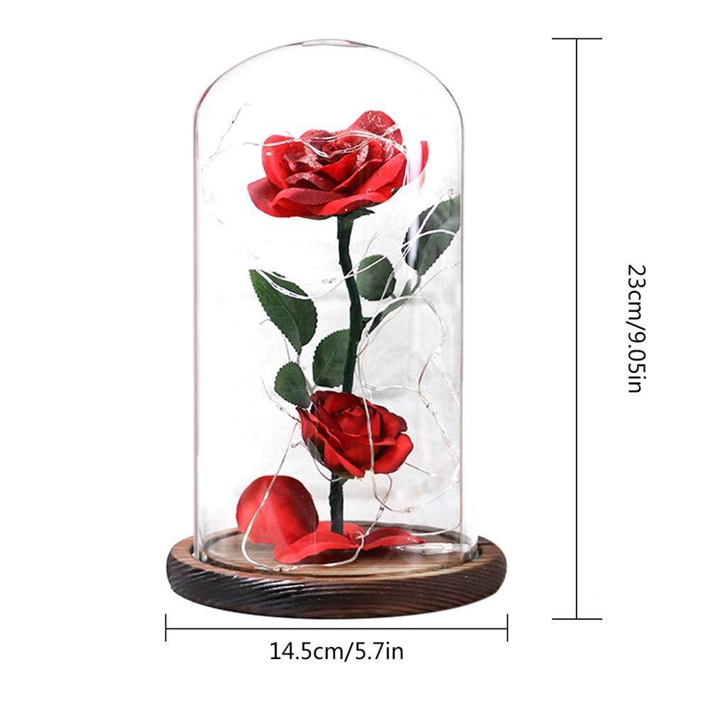 Rose Incantate con Luci LED Regali Magici Decorazioni per Festa della Mamma della s.Valentino Anniversario di Matrimonio Vacanza BOPUROY Rosa Bella e la Bestia