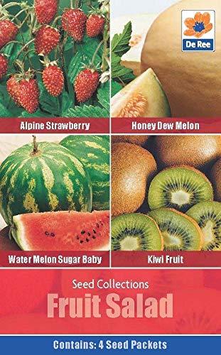 ScoutSeed SEED Collection Pack - Fruchtsalat Samen - ERDBEERE, MELON, KIWI Kiwi Collection