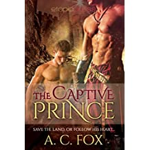 The Captive Prince (The Warriors of Love & Magic Book 2) (English Edition)