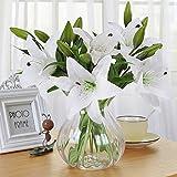 Flores Artificiales, Meiwo 5 Pcs Real Toque Látex Artificial Lillies Flores en Floreros Decoración de Boda /...