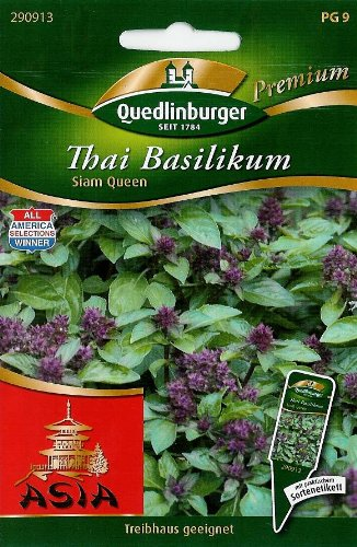 Thai-Basilikum, Siam Queen -