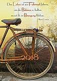 """dicker Tagebuch Kalender 2018 """"Das Leben ist wie Fahrrad fahren, um die Balance zu halten musst ?"""": (Albert Einstein) - DIN A4 - 1 Tag pro Seite - edition cumulus"""
