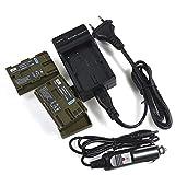 DSTE 2-pacco Ricambio Batteria + DC19E Caricabatteria per Canon BP-511 BP-511A EOS 10D EOS 20D EOS 20Da EOS 300D EOS 30D EOS 40D EOS 50D EOS 5D EOS D30 EOS D60 EOS DM-MV100X DM-MV100Xi DM-MV30 DM-MV400 DM-MV430