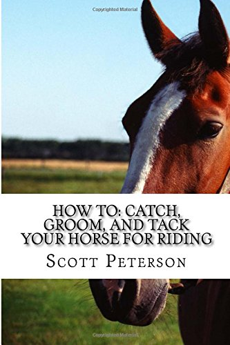 How to: Catch, Groom, and Tack Your Horse for Riding