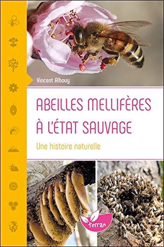 Abeilles mellifères à l'état sauvage - Une histoire naturelle par Vincent Albouy