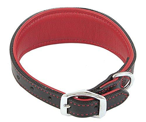 outhwaite-padded-greyhound-collar-15-mm-x-46-cm-red-black