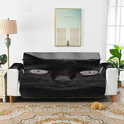 "QuqUshop Gato Cat An Animal Kitty Cute Pet Feline Kitten Sofa Bottom Cushion Velvet Sofa Cover Cushions for Sofa for 45""(114cm) Sofa Protect from Kids Dogs Pets"