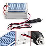 Generatore di ozono portatile, DC12v 10g / H Ozonizzatore ceramico del piatto dell'automobile, purificatore dell'aria, macchina dell'ozono dell'automobile dello sterilizzatore dell'aria