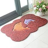 Fei Teng Teppich - Environmental gebürstete Gesichtsmatte, Türmatte, Reibung Haushaltsmatte, Bad-WC-Matte, Kunststoff geprägte Bürstenmatte (68X48CM) Hauptteppich (Farbe : B)