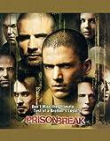 Prison Break (TV) 11x17 Inch (28 x 44 cm) Movie Poster