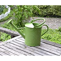 MIA&prit 3.5 Letre Metal Watering Bucket,Traditional Watering Can Beautiful Kids Children Garden Watering Can