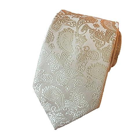 Z-P Mens Eagle Luxury Elegant Beige Necktie Woven Skinny Microfiber Tie