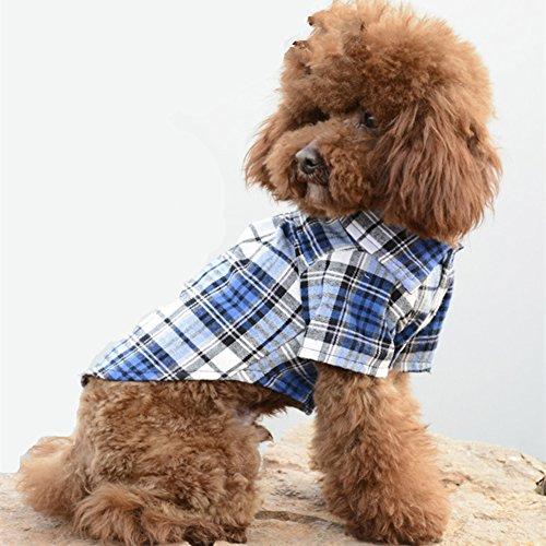 Hunde Kleider Haustiere Dekoration Sonnenschutz Modische Casual Plaid Shirt Gute Geschenke für Hunde S-XL (XL, blau) (Hund Kleid Modische)