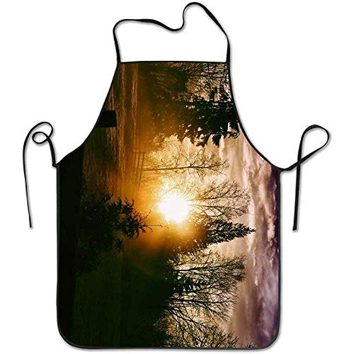 ouyjian Green Apron Nature Landscape Trees Grass Sun Clouds Funny Cooking Apron for Men - BBQ Grill Kitchen Chef Barbecue Gifts, One Size Fits Most (Bbq Grill Kostüm)