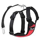 Pawaboo Cinturón de Arnés de Chaleco de Seguridad para Perros, Mascotas Arnés Ajustable de Malla para el Conductor para Perros de 11 lb-33 LB, Rojo