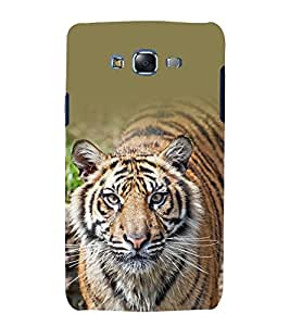 printtech Nature Animal Tiger Back Case Cover for Samsung Galaxy J2 / Samsung Galaxy J2 J200F