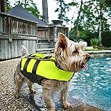 umebiz - Chaleco Salvavidas para Perros pequeños, medianos y Grandes, Color Verde