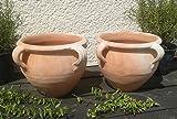 2 Stück Blumentopf echt Terrakotta 20 cm, Blumenkübel für Garten und Wohnung Terracotta ........... kein Kunststoff, Blumen
