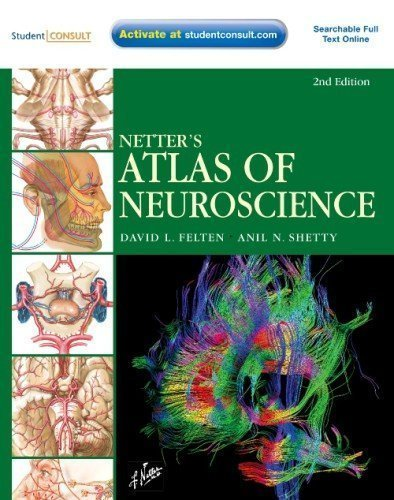 Netter's Atlas of Neuroscience: with STUDENT CONSULT Online Access, 2e (Netter Basic Science) 2nd (second) edition by Felten MD PhD, David L., Shetty PhD, Anil published by Saunders (2009) Paperback