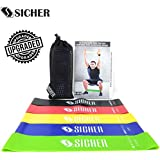SICHER Resistance Band/Mini Loop Bands Set of 5 with Upgraded Physical Booklet with 40 Plus Exercises (Green,Blue,Yellow,Red & Black) 12 Inch