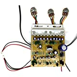 TECH AND TRADE 100W Diy Stereo Audio Amplifier Circuit Kit Board Bass Treble Balance (4440 DUAL TONE BOARD)
