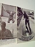 NEUES FILMPROGRAMM NFP Nr. 7294 Spider-Man Der Spinnenmensch, Juni 1978 (Nicolas Hammond)